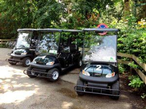 centerparcs golfkar e-car huren